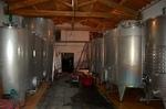 stainless-stell-fermentation.jpg